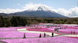 Núi Fuji